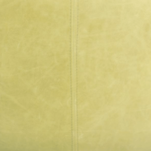 Cerato Pale Green Leather